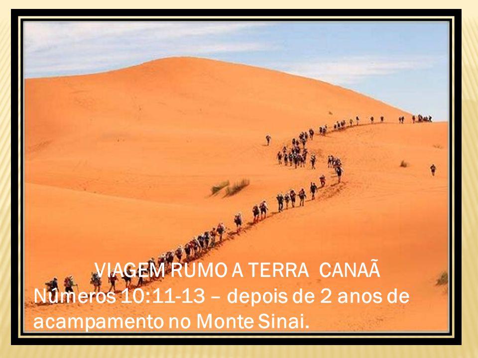 VIAGEM RUMO A TERRA CANAÃ Números 10:11-13 – depois de 2 anos de acampamento no Monte Sinai.
