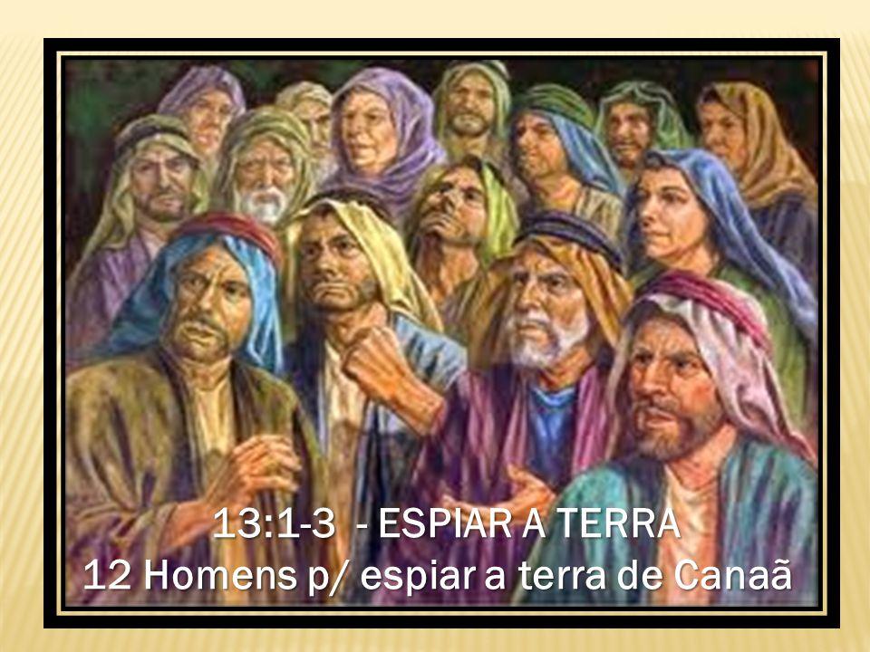 13:1-3 - ESPIAR A TERRA 12 Homens p/ espiar a terra de Canaã