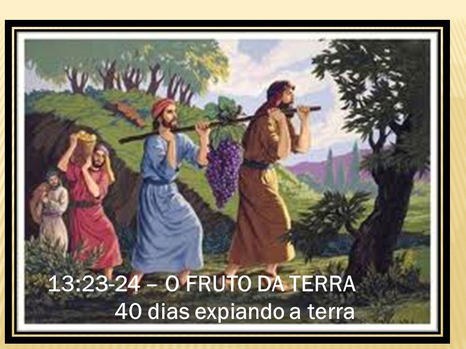 13:23-24 – O FRUTO DA TERRA 40 dias expiando a terra