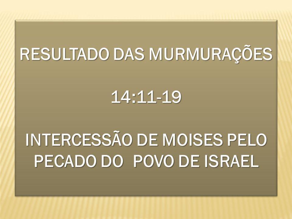 RESULTADO DAS MURMURAÇÕES 14:11-19 INTERCESSÃO DE MOISES PELO PECADO DO POVO DE ISRAEL RESULTADO DAS MURMURAÇÕES 14:11-19 INTERCESSÃO DE MOISES PELO P