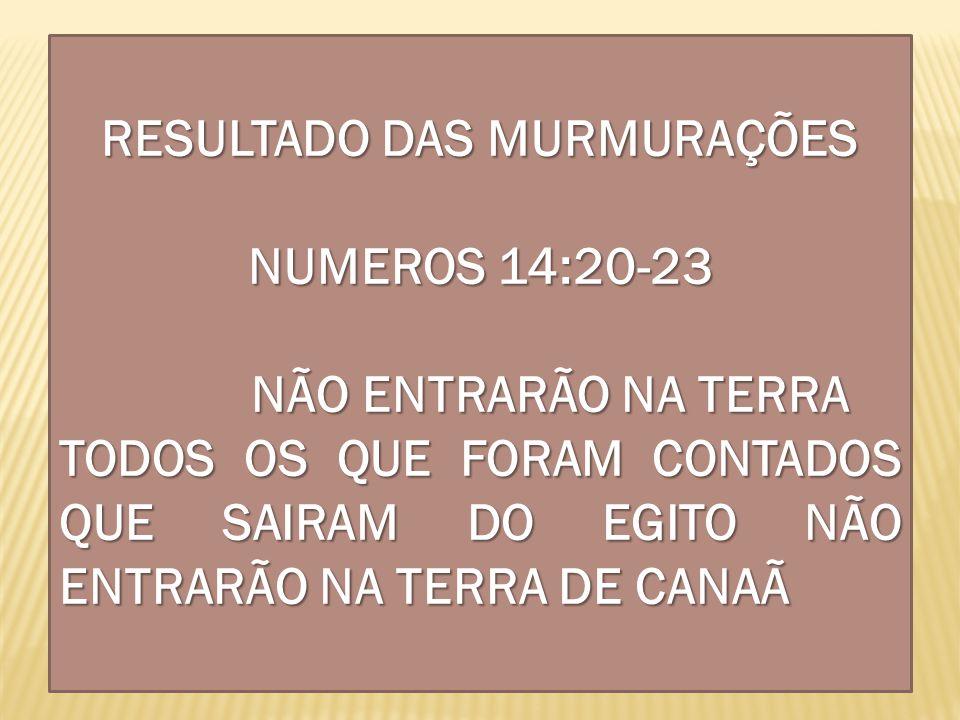RESULTADO DAS MURMURAÇÕES NUMEROS 14:20-23 NÃO ENTRARÃO NA TERRA TODOS OS QUE FORAM CONTADOS QUE SAIRAM DO EGITO NÃO ENTRARÃO NA TERRA DE CANAÃ
