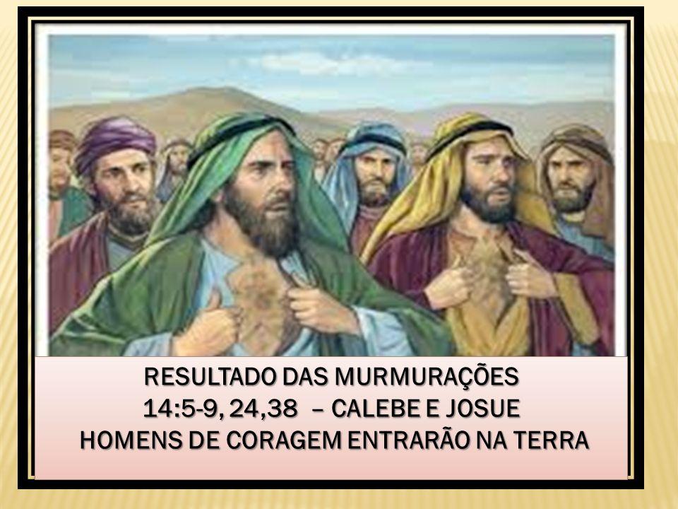 RESULTADO DAS MURMURAÇÕES 14:5-9, 24,38 – CALEBE E JOSUE HOMENS DE CORAGEM ENTRARÃO NA TERRA HOMENS DE CORAGEM ENTRARÃO NA TERRA RESULTADO DAS MURMURA