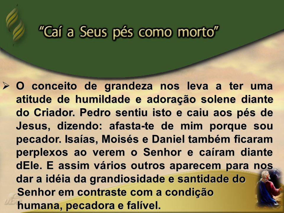 - Resumo: Pr.Salésio Silva – Distrital de São Bento do Sul/SC, pertencente à AC.