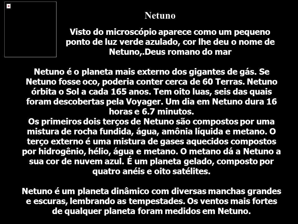 Netuno é o planeta mais externo dos gigantes de gás. Se Netuno fosse oco, poderia conter cerca de 60 Terras. Netuno órbita o Sol a cada 165 anos. Tem