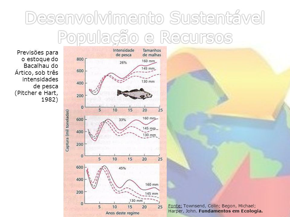 Fonte: Townsend, Colin; Begon, Michael; Harper, John. Fundamentos em Ecologia. Previsões para o estoque do Bacalhau do Ártico, sob três intensidades d