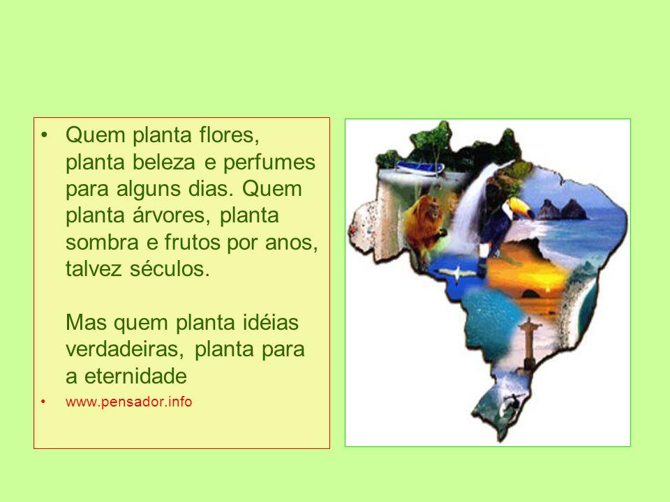 Desde 1972, o dia 05 de Junho é comemorado o Dia Mundial do Meio Ambiente. Mas infelizmente não são todos os que conhecem ou compreendem a importância
