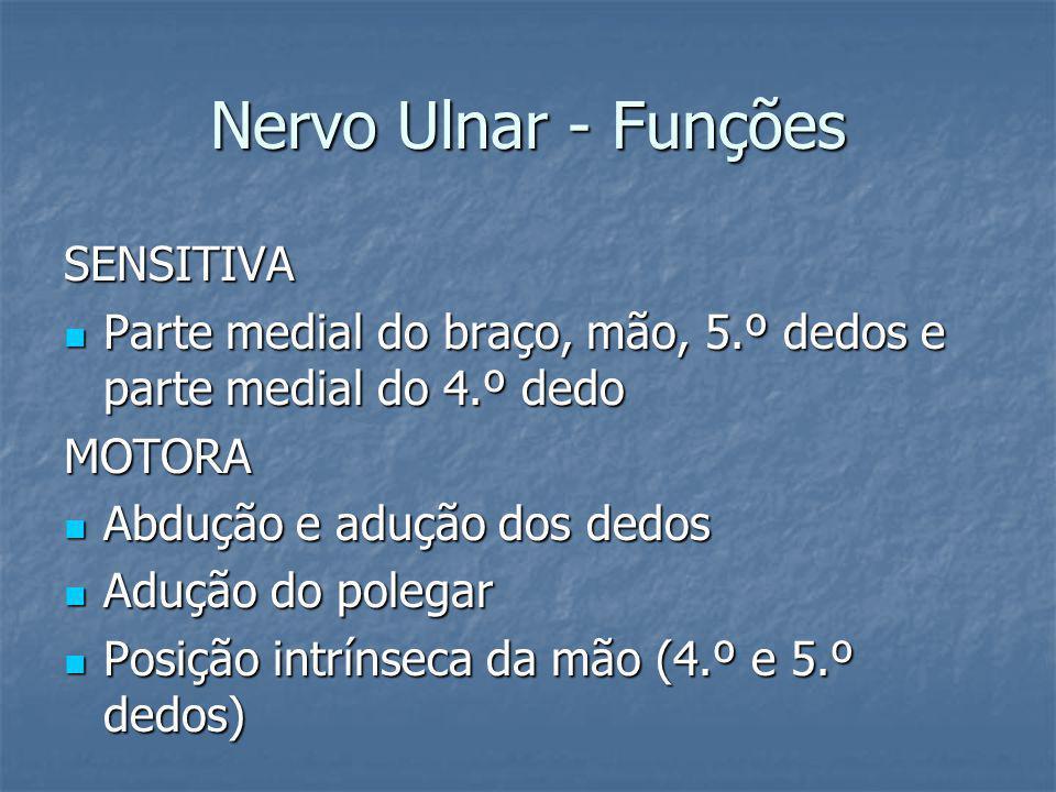 Nervo Ulnar - Funções SENSITIVA Parte medial do braço, mão, 5.º dedos e parte medial do 4.º dedo Parte medial do braço, mão, 5.º dedos e parte medial
