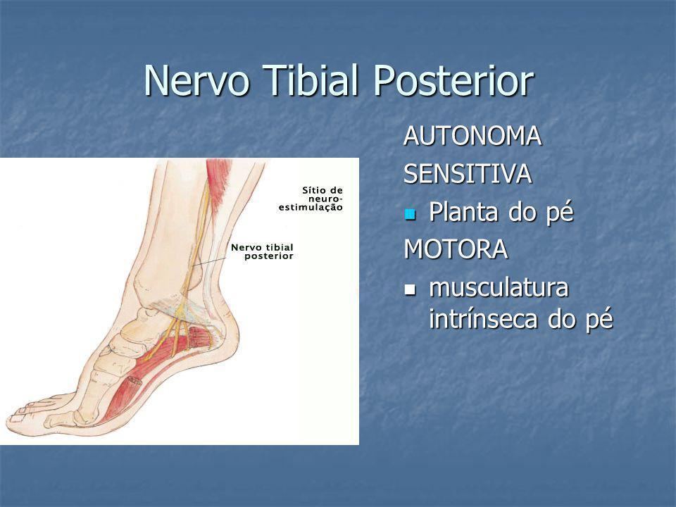 Nervo Tibial Posterior AUTONOMASENSITIVA Planta do pé Planta do péMOTORA musculatura intrínseca do pé musculatura intrínseca do pé