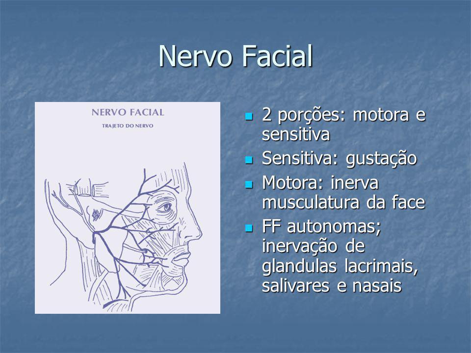 Nervo Facial 2 porções: motora e sensitiva 2 porções: motora e sensitiva Sensitiva: gustação Sensitiva: gustação Motora: inerva musculatura da face Motora: inerva musculatura da face FF autonomas; inervação de glandulas lacrimais, salivares e nasais FF autonomas; inervação de glandulas lacrimais, salivares e nasais