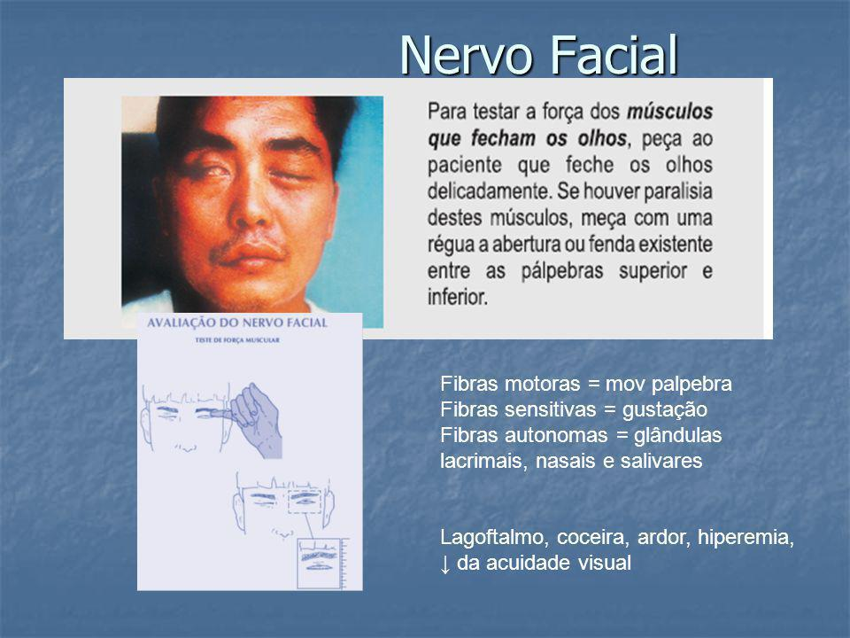 Fibras motoras = mov palpebra Fibras sensitivas = gustação Fibras autonomas = glândulas lacrimais, nasais e salivares Lagoftalmo, coceira, ardor, hiperemia, da acuidade visual Nervo Facial
