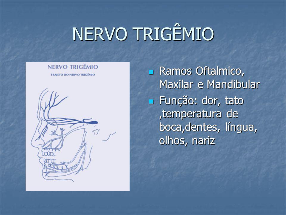 NERVO TRIGÊMIO Ramos Oftalmico, Maxilar e Mandibular Ramos Oftalmico, Maxilar e Mandibular Função: dor, tato,temperatura de boca,dentes, língua, olhos