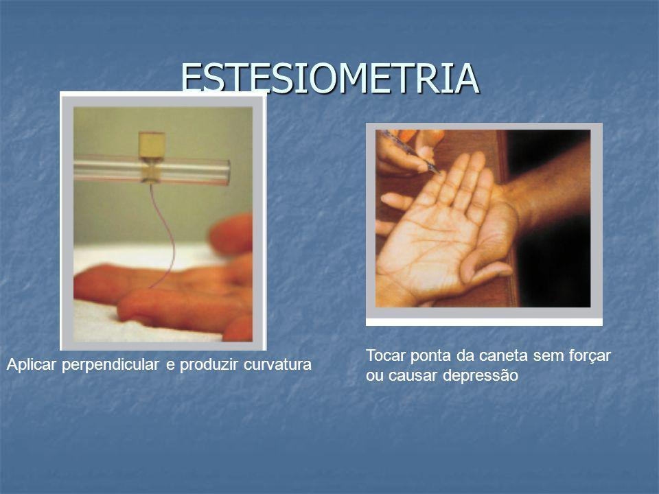 ESTESIOMETRIA Aplicar perpendicular e produzir curvatura Tocar ponta da caneta sem forçar ou causar depressão