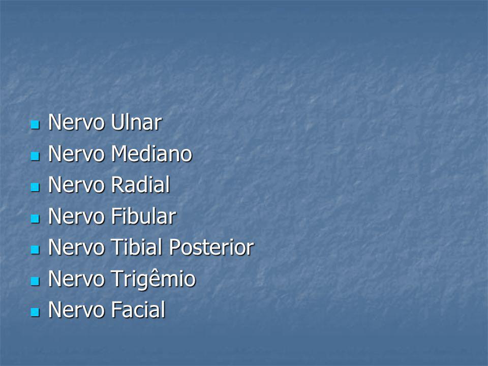 Nervo Ulnar Nervo Ulnar Nervo Mediano Nervo Mediano Nervo Radial Nervo Radial Nervo Fibular Nervo Fibular Nervo Tibial Posterior Nervo Tibial Posterio