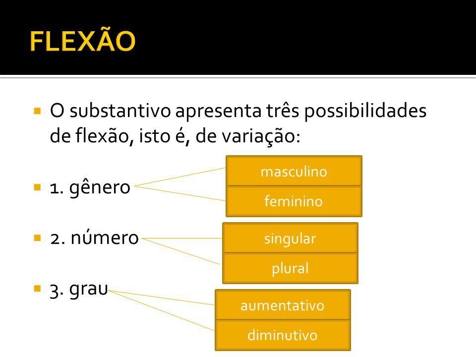 O substantivo apresenta três possibilidades de flexão, isto é, de variação: 1. gênero 2. número 3. grau masculino feminino singular plural aumentativo