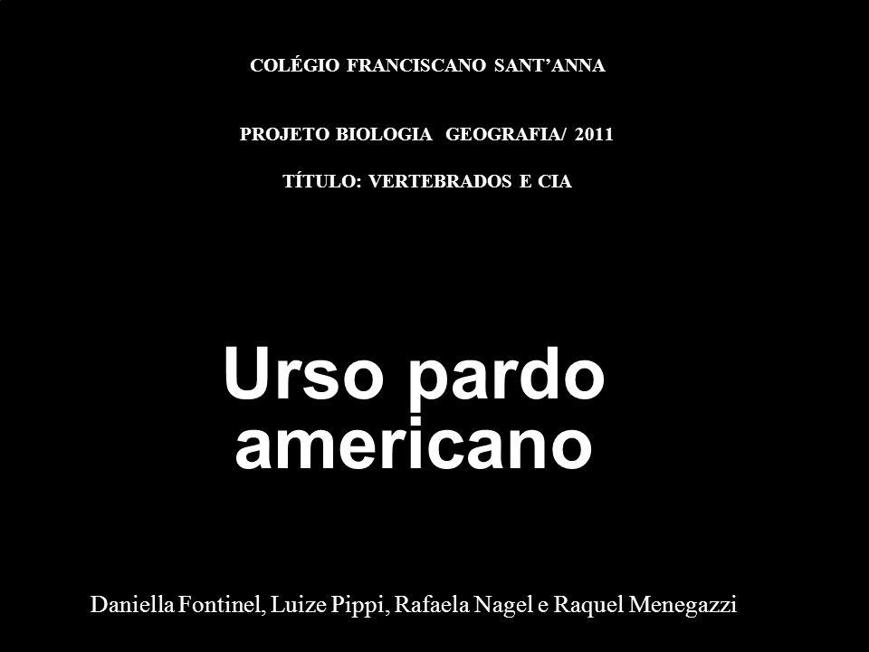 COLÉGIO FRANCISCANO SANTANNA PROJETO BIOLOGIA GEOGRAFIA/ 2011 TÍTULO: VERTEBRADOS E CIA Urso pardo americano Daniella Fontinel, Luize Pippi, Rafaela N