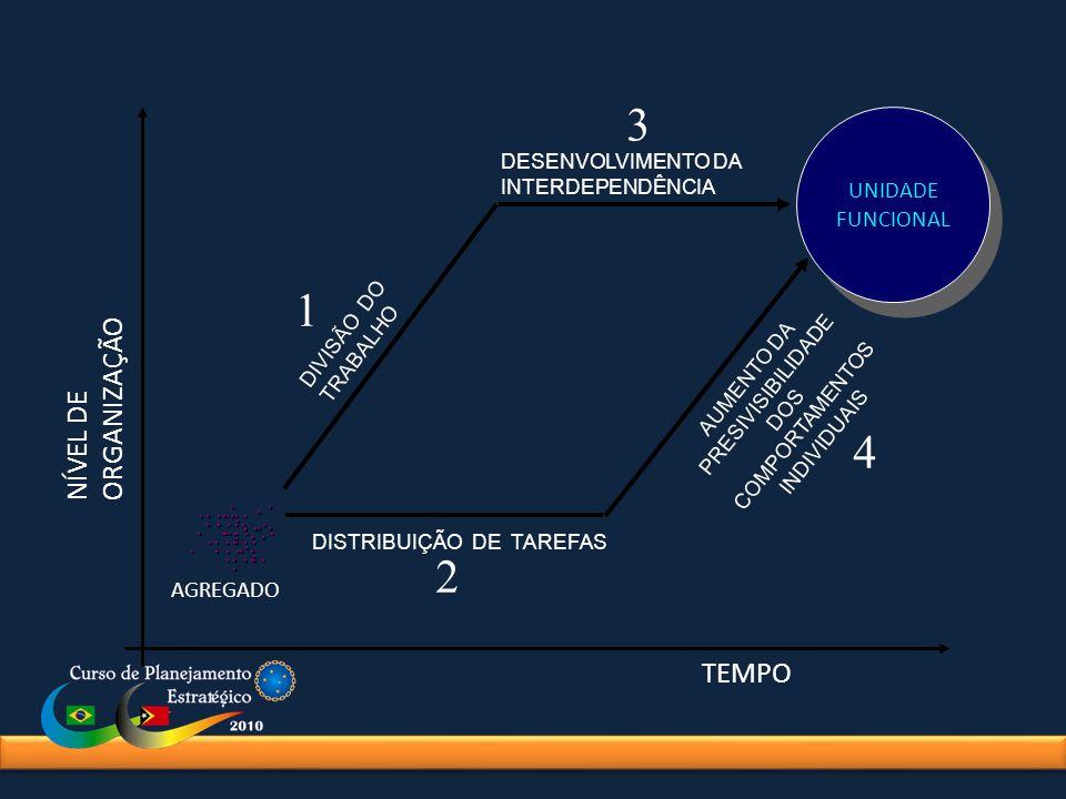DISTRIBUIÇÃO DE TAREFAS DIVISÃO DO TRABALHO UNIDADE FUNCIONAL DESENVOLVIMENTO DA INTERDEPENDÊNCIA AUMENTO DA PRESIVISIBILIDADE DOS COMPORTAMENTOS INDI