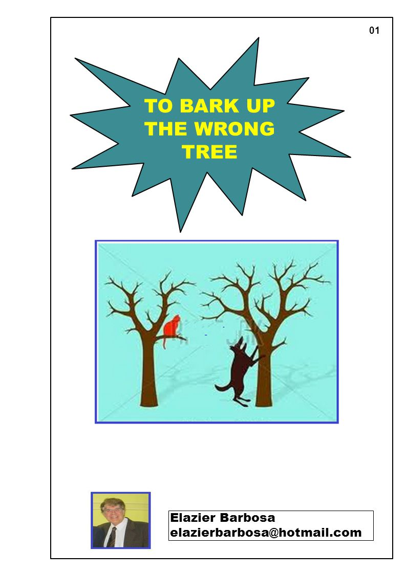 01 TO BARK UP THE WRONG TREE Elazier Barbosa elazierbarbosa@hotmail.com