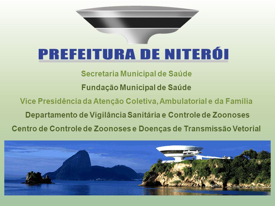 Secretaria Municipal de Saúde Fundação Municipal de Saúde Vice Presidência da Atenção Coletiva, Ambulatorial e da Família Departamento de Vigilância S