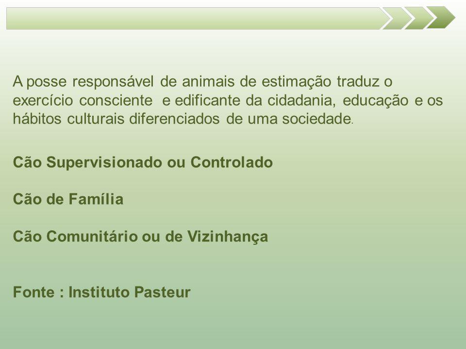 A posse responsável de animais de estimação traduz o exercício consciente e edificante da cidadania, educação e os hábitos culturais diferenciados de