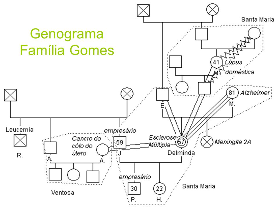 Genograma: Genograma da Família Gomes Genograma Família Gomes