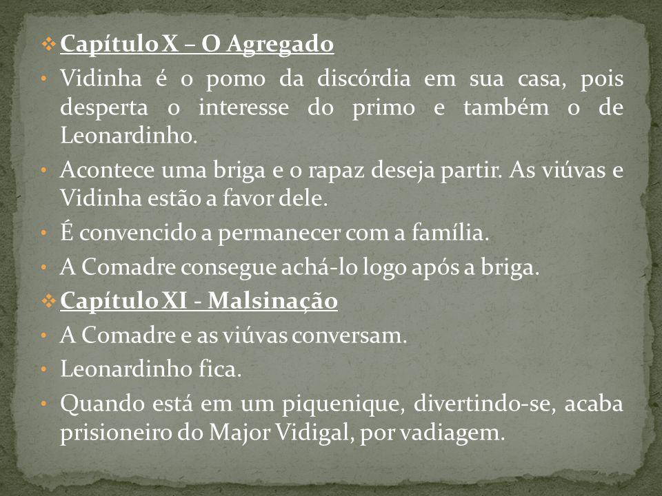 Capítulo X – O Agregado Vidinha é o pomo da discórdia em sua casa, pois desperta o interesse do primo e também o de Leonardinho. Acontece uma briga e