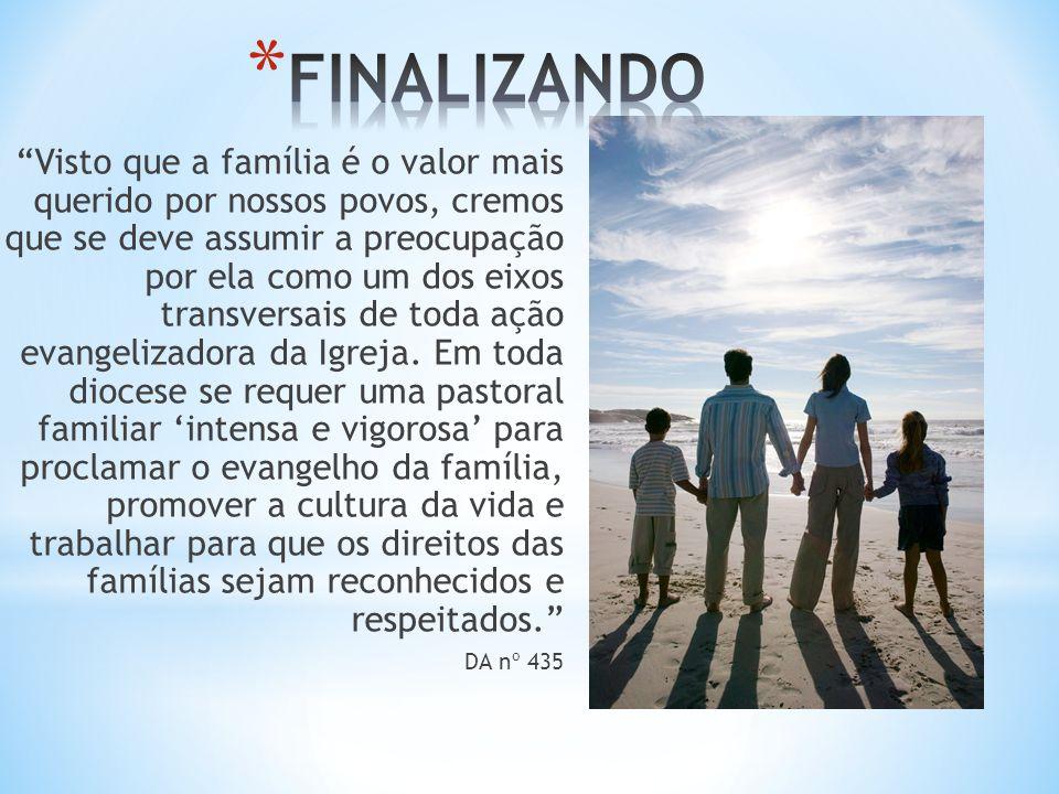 Visto que a família é o valor mais querido por nossos povos, cremos que se deve assumir a preocupação por ela como um dos eixos transversais de toda ação evangelizadora da Igreja.