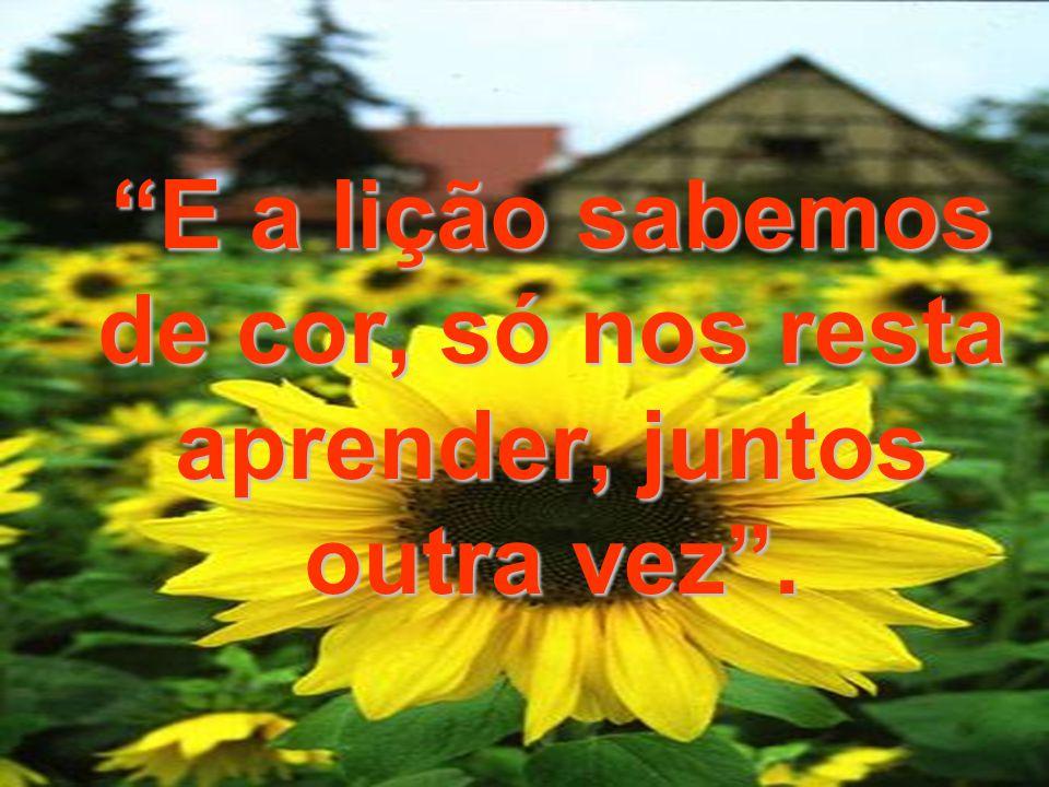 Coração da Paz www.pazcury.com.br – (31) 9301.0950 112