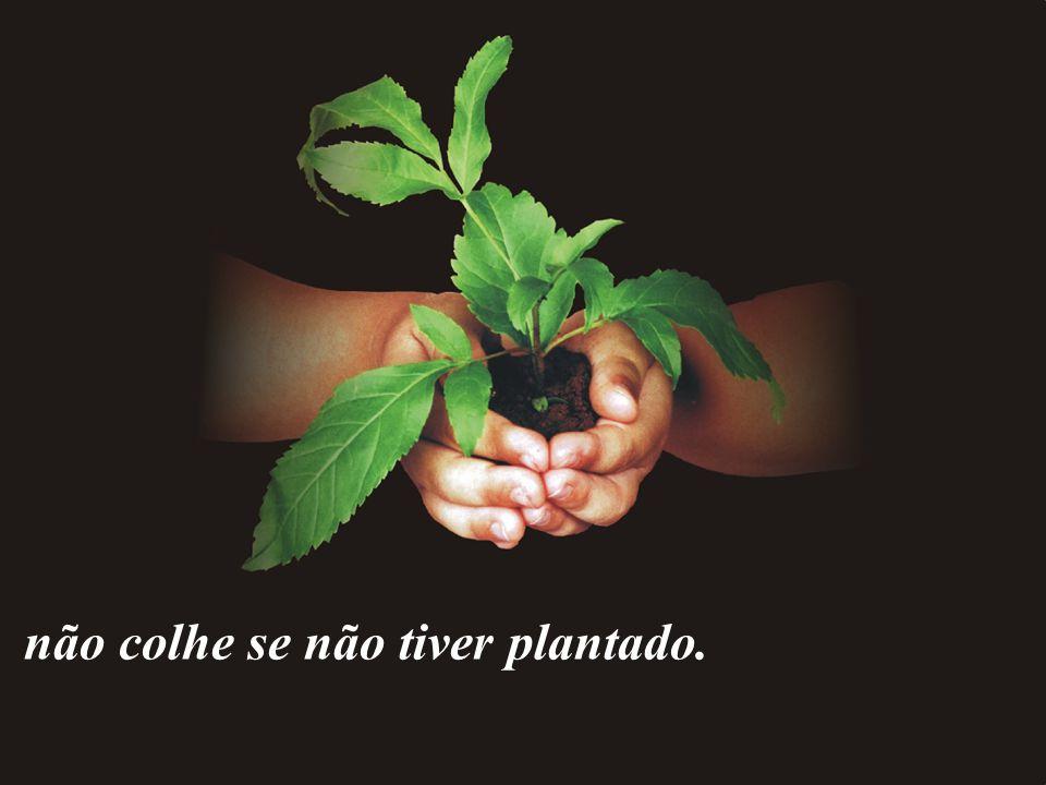 www.pazcury.com.br – (31) 9301.0950 23 Ninguém planta nada se não tiver sementes, e