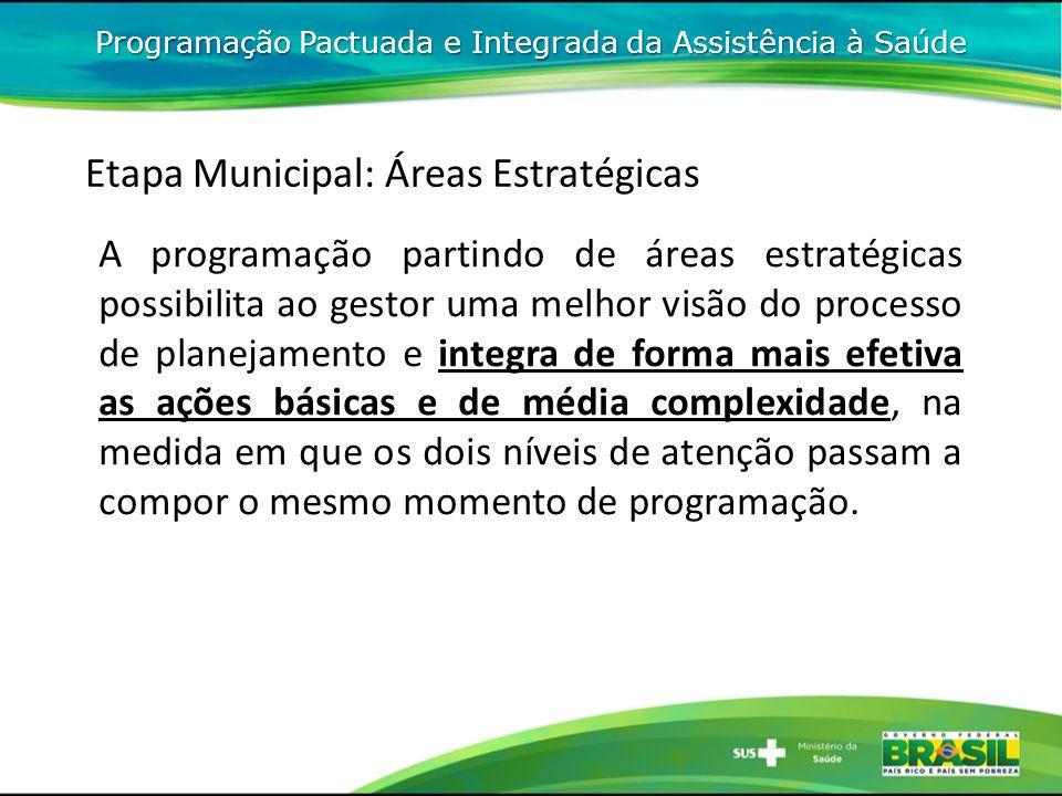 Etapa Municipal: Áreas Estratégicas A programação partindo de áreas estratégicas possibilita ao gestor uma melhor visão do processo de planejamento e