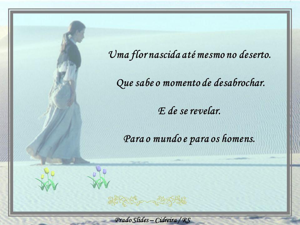 Prado Slides – Cidreira / RS Uma mulher forte tem o olhar de segurança na face. Mas uma mulher de força tem a graça e a suavidade de uma flor.