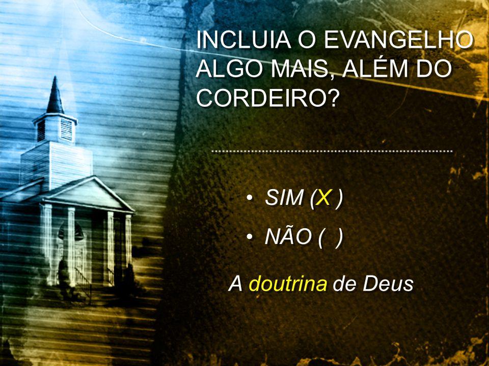 INCLUIA O EVANGELHO ALGO MAIS, ALÉM DO CORDEIRO? SIM (X ) NÃO ( ) SIM (X ) NÃO ( ) A doutrina de Deus