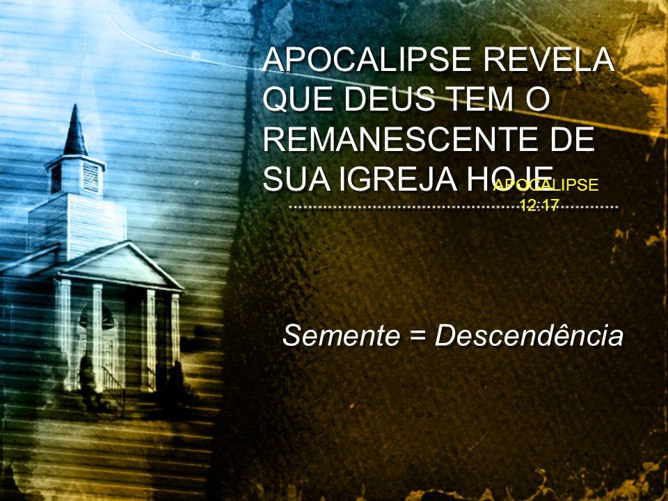 APOCALIPSE REVELA QUE DEUS TEM O REMANESCENTE DE SUA IGREJA HOJE Semente = Descendência APOCALIPSE 12:17