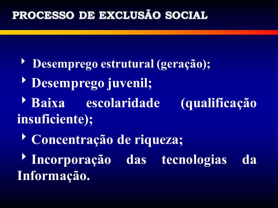 PROCESSO DE EXCLUSÃO SOCIAL Desemprego estrutural (geração); Desemprego juvenil; Baixa escolaridade (qualificação insuficiente); Concentração de rique