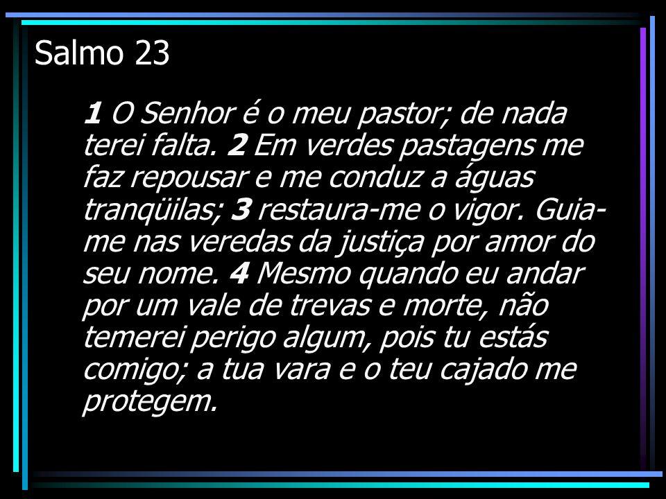 Salmo 23 1 O Senhor é o meu pastor; de nada terei falta. 2 Em verdes pastagens me faz repousar e me conduz a águas tranqüilas; 3 restaura-me o vigor.