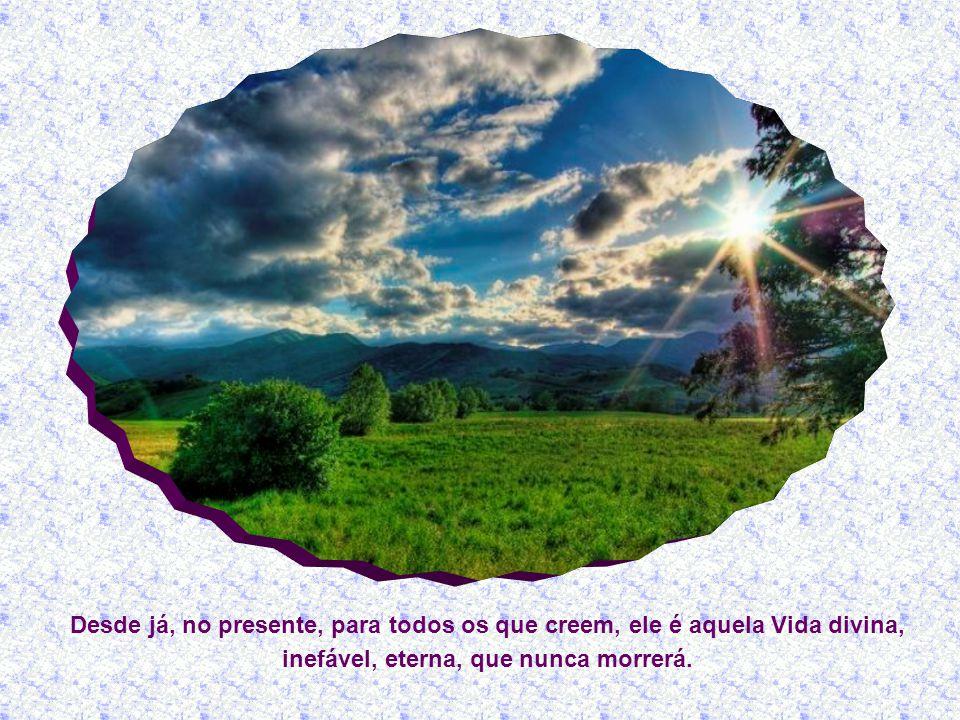 Mas Jesus, com a sua afirmação maravilhosa, Eu sou a ressurreição e a vida, lhe revela que ela não precisa aguardar o futuro para ter esperança na ressurreição dos mortos.