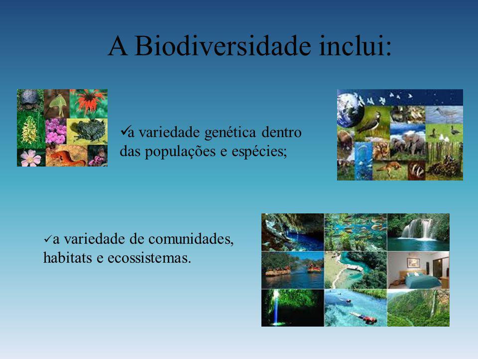 A Biodiversidade inclui: a variedade genética dentro das populações e espécies; a variedade de comunidades, habitats e ecossistemas.