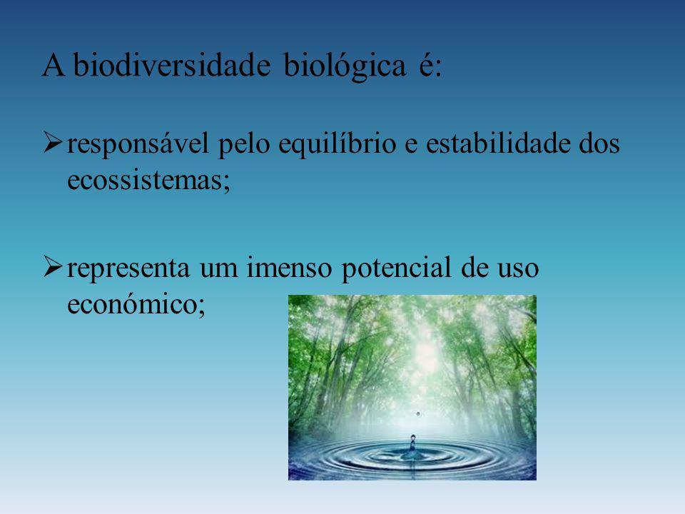 A biodiversidade biológica é: responsável pelo equilíbrio e estabilidade dos ecossistemas; representa um imenso potencial de uso económico;