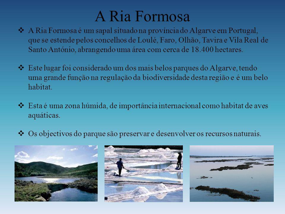 A Ria Formosa A Ria Formosa é um sapal situado na província do Algarve em Portugal, que se estende pelos concelhos de Loulé, Faro, Olhão, Tavira e Vil