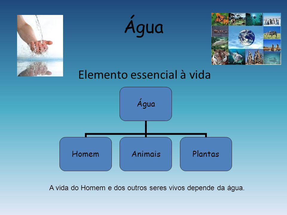 Água Elemento essencial à vida Água HomemAnimaisPlantas A vida do Homem e dos outros seres vivos depende da água.