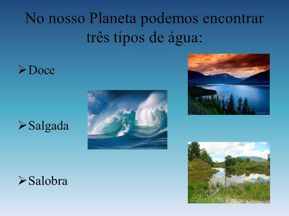 No nosso Planeta podemos encontrar três tipos de água: D oce S algada S alobra