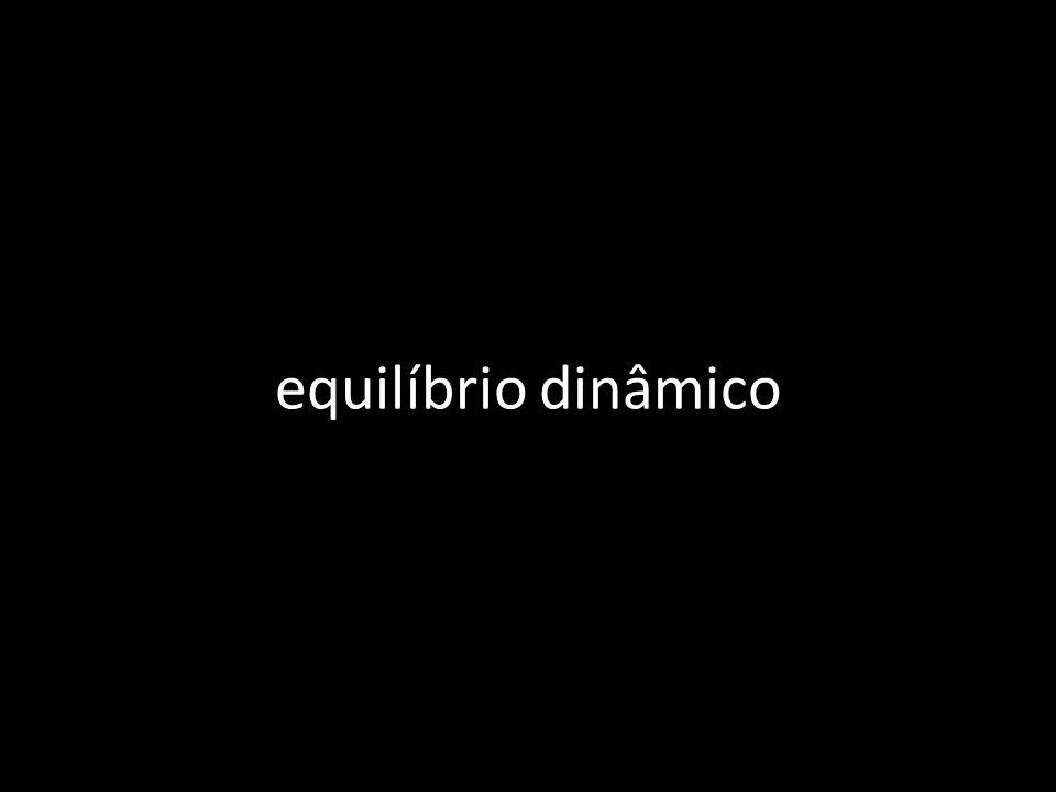 equilíbrio dinâmico