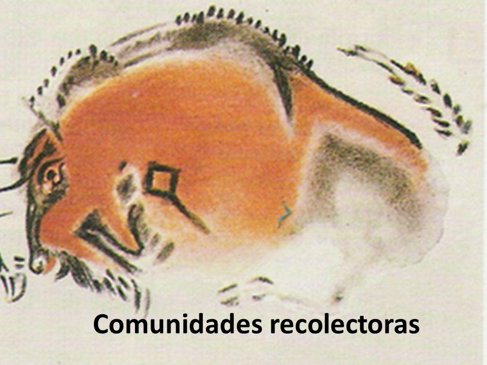 Comunidades recolectoras