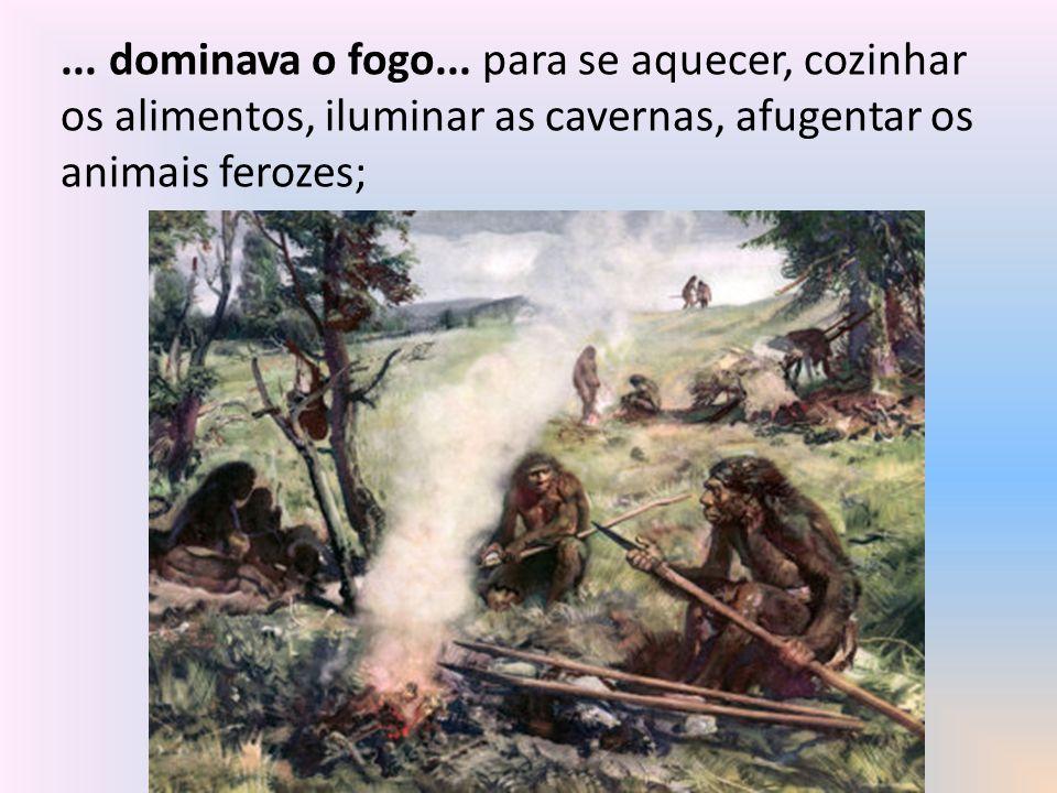 ... dominava o fogo... para se aquecer, cozinhar os alimentos, iluminar as cavernas, afugentar os animais ferozes;