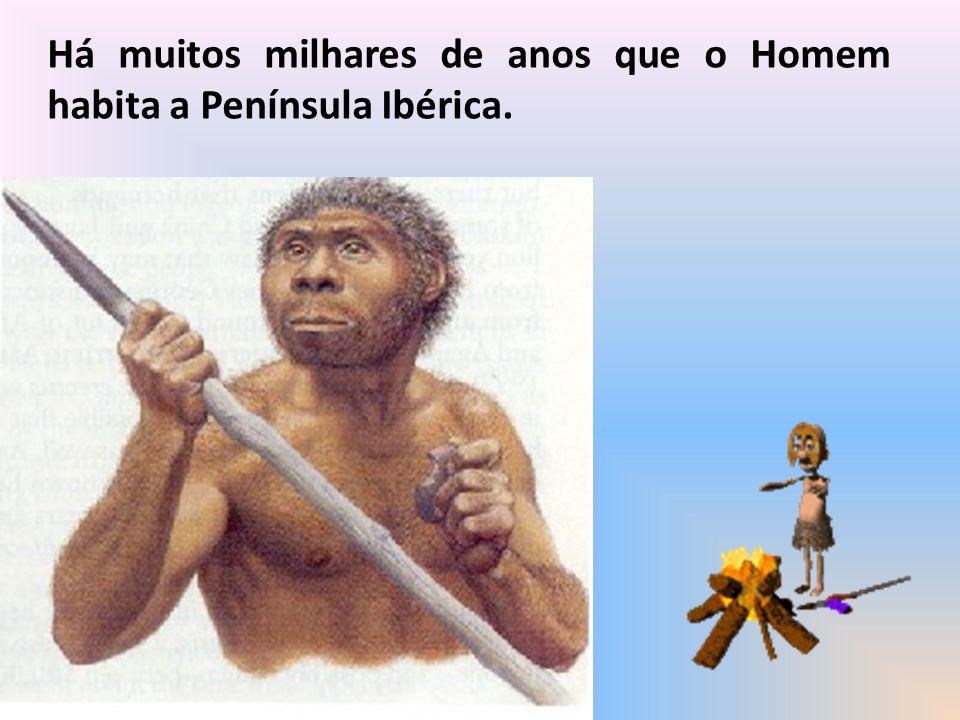 Bibliografia consultada http://www.eb23-cmdt-conceicao-silva.rcts.pt/ http://sol.sapo.pt/blogs/olindagil/