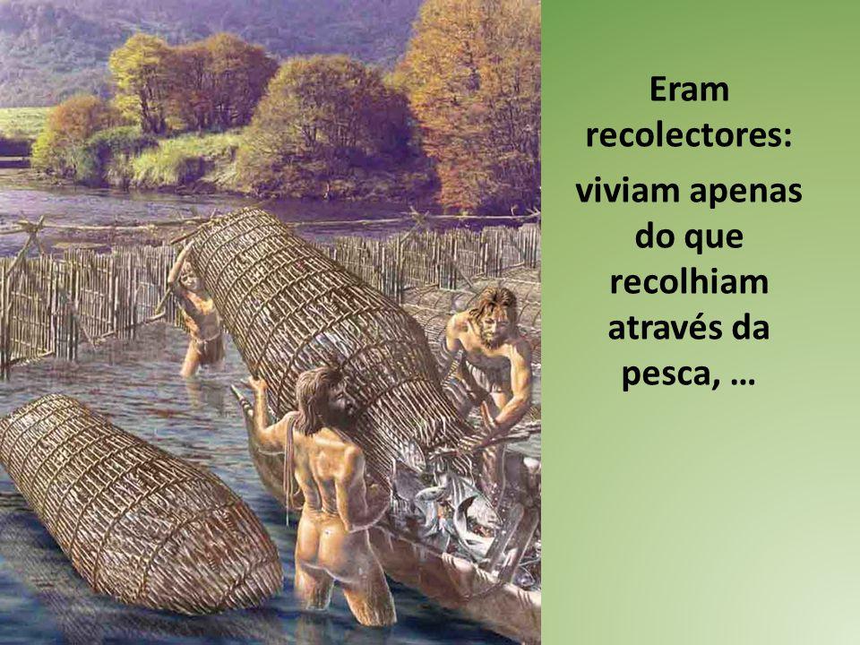 Eram recolectores: viviam apenas do que recolhiam através da pesca, …