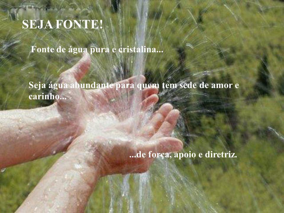 SEJA FONTE.Fonte de água pura e cristalina... SEJA FONTE.