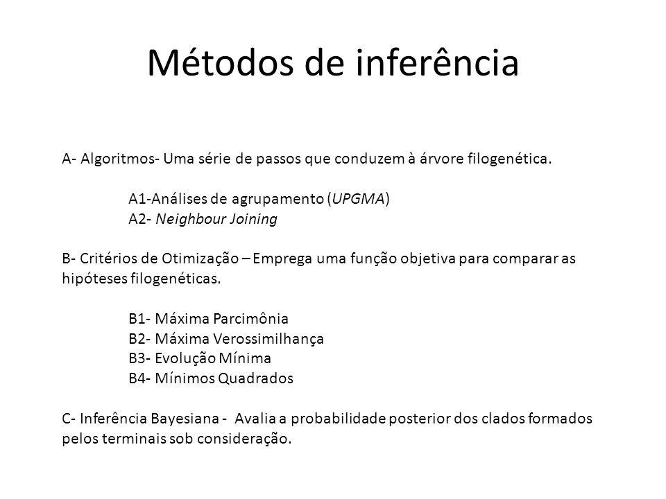 Métodos de inferência A- Algoritmos- Uma série de passos que conduzem à árvore filogenética.