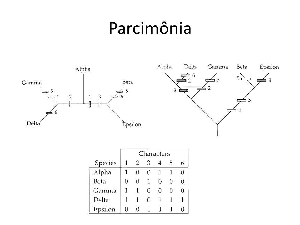 Parcimônia de Fitch Premissas: Caracteres não polarizados e não ordenados.