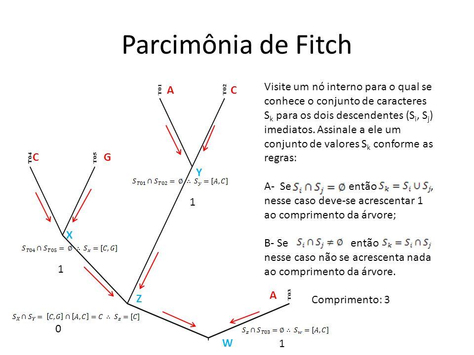 Parcimônia de Fitch C A G C A Visite um nó interno para o qual se conhece o conjunto de caracteres S k para os dois descendentes (S i, S j ) imediatos.