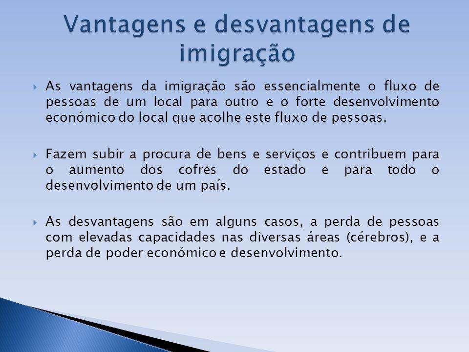 As vantagens da imigração são essencialmente o fluxo de pessoas de um local para outro e o forte desenvolvimento económico do local que acolhe este fl